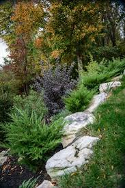 garden rockery ideas best 25 hillside garden ideas on pinterest sloping garden