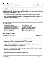 Officer Resume Security Resume Format Resume For Your Job Application