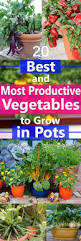 best 10 growing vegetables ideas on pinterest compost growing