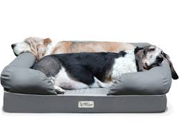 why petfusion ultimate dog bed will change your life