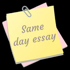 buying essay muzartman   Free Essays and Papers
