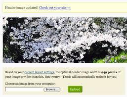 Upload Header Image DIYthemes Header image appearing after successful upload