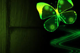 Neon Green Wallpaper by Neon Butterfly And Flowers Wallpaper Wallpapersafari