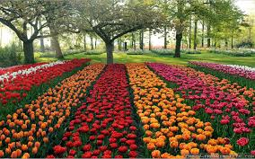 beautiful garden hd image design the garden trends