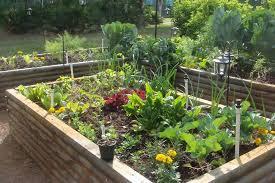 spring planting vegetable growing seasons vegetable garden
