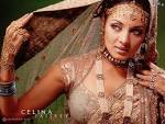 ATK News: Celina Jaitley Wallpapers