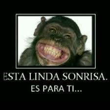 Hoy dedico una sonrisa, ....... Images?q=tbn:ANd9GcRHVKuVurrgLrLX1O9rog_x5fSEXcAuLdbSw_CrXEQI_LdAQPFlrg