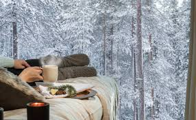arctic treehouse hotel rovaniemi finnish lapland hotels and