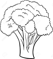 black and white cartoon illustration of broccoli vegetable food