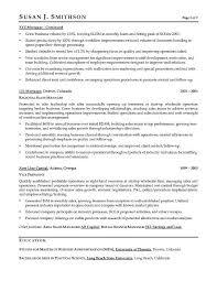 VP Sales Sample Resume   Executive resume writer for VP  Director     An Expert Resume