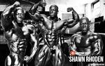 Shawn Rhoden 2013 | Bodybuilding Wallpapers HD | Awesome poser awesome-body.info
