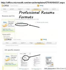 How To Write Job Resume by Professional Resume Format How To Write A Professional Resume