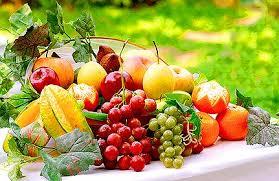 Forêt de fruits et parterre de légumes