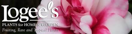 logee u0027s plants for home u0026 garden blog since 1892 we u0027ve been