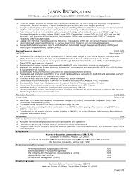 Summary Sample Resume by Resume Help Org Resume Examples Resume Help Free Resume Finance