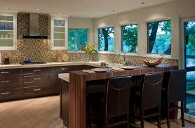 best extraordinary transitional kitchens pictures 4823
