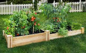 small vegetable garden plans for full sun house and decor garden