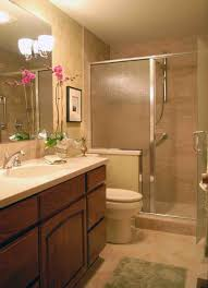 Small Shower Bathroom Small Bathroom Ideas With Shower Only Descargas Mundiales Com