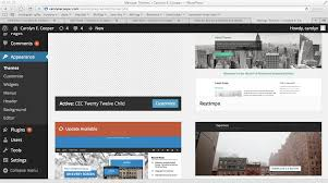 How to Make Changes to or Modify Your Wordpress Theme   Carolyn E     Image of the WordPress Admin Appearance screen  To modify your WordPress theme