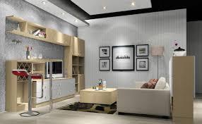 apartment bedroom phenomenal living room ceiling design formal
