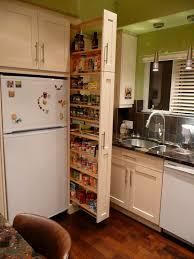 kitchen extraordinary skinny kitchen cabinet alejandra organizing