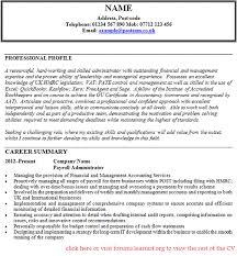 Free CV templates  resume examples  free downloadable  curriculum     Dayjob Retail Manager CV template resume   Dayjob