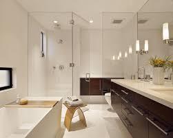 modern bathroom design ideas freshouz