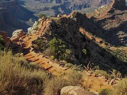 Grand Canyon with Kids   What You Need to Know Before You Go Honourable Mention