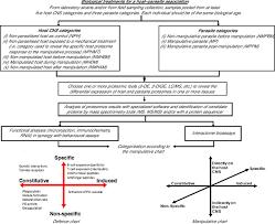 host u2013parasite molecular cross talk during the manipulative process
