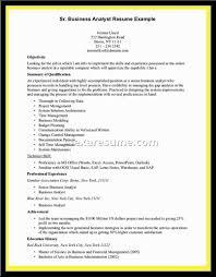 Best Business Analyst Resume  it analyst resume  cover letter it     Best Business Analyst Resume Examples   ALEXA RESUME   best business analyst resume