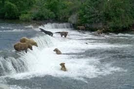 Bristol Bay Borough, Alaska