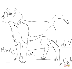 dog coloring pages itgod me