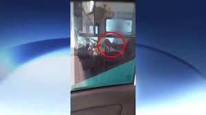 Imprudência! Motorista de ônibus é flagrado dirigindo e usando ...
