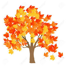 Maple Tree Symbolism by Maple Tree Autumn Leaves Background Vector For Poster Royalty Free