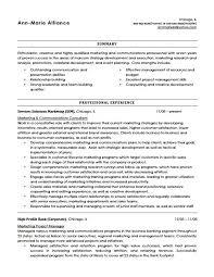Resume Headline Examples by Resume Headline Example For Freshers Templates