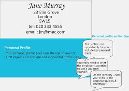 Profile Section Of Resume Examples by 179 Best Cv Examples Images On Pinterest Cv Examples Resume