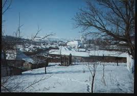 Cozma, Mureș