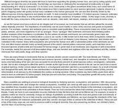 medical school admission essay examples Millicent Rogers Museum