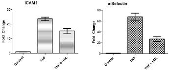 recombinant human tnf alpha protein 210 ta r u0026d systems