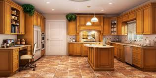 What Is The Best Lighting For A Kitchen by Kitchen Cabinets 824 1751 The Best Kitchen Cabinets Bronx