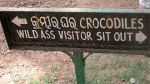 Drozdovskij  wins Bhubaneswar Open   ChessBase A somewhat mysterious sign in the zoo provide instructions to the zoo visitors     and to you  gentle reader