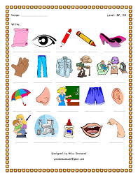 FREE Appearance Body Parts Worksheets