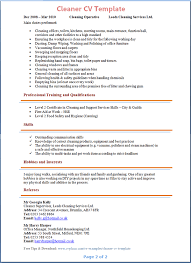 How to Write a Resume Summary that Grabs Attention   Blue Sky     Professional CV Writing Services