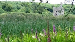 Ruan, County Clare