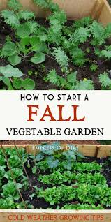 How To Keep Deer Out Of Vegetable Garden by 128 Best What U0027s Growing In My Yard Images On Pinterest
