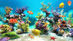 Sim Aquarium Live Wallpaper - แอปพลิเคชัน Android ใน Google Play