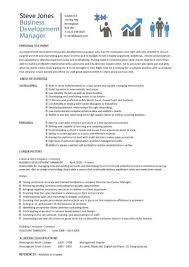 Business development manager CV template  managers resume     Business Development Manager CV