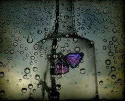 Dũng cảm để yêu lần nữa! Images?q=tbn:ANd9GcRR1r-Bj5AFGW3FS3-P8k2U9FiJYWgJoW7hAOi1h2MrMq206sdvRA