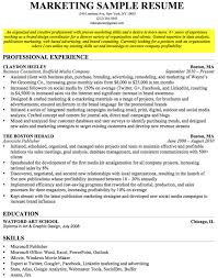 Sample Resume Summary        Experience Resumes