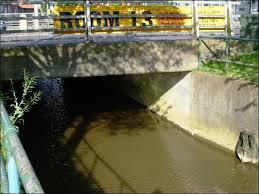 River Waring